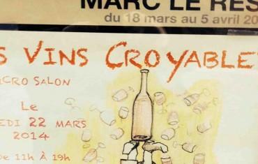 les vins croyables, le micro salon