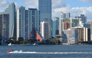 Miami vice, bloody Miami