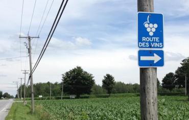 Sur la route des vins du Québec