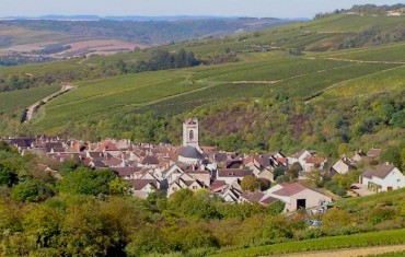 Chablis, la force tranquille