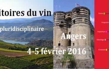 Les territoires du vin à Angers