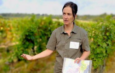 Profession : guide oenotouristique