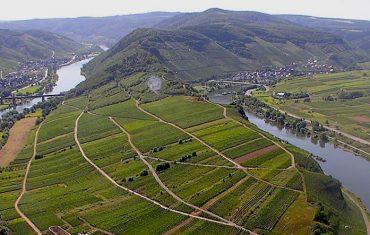 Cap à l'Est#1 : la Moselle viticole