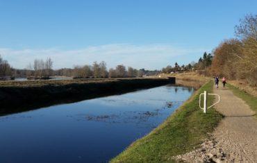 La renaissance des vins de Loire : l'AOC Orléans