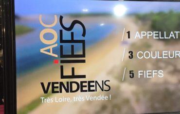 Vins de Vendée : on y revient !