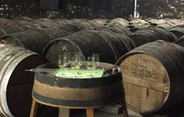 Cognac#1 : le spiritourisme
