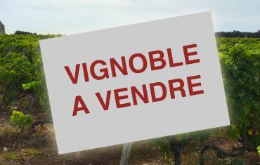 Le prix des vignes édition 2019