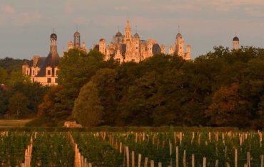 Sa majesté le vin de Chambord