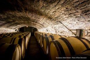 Bourgogne cave du domaine futs en chêne gout de boisé
