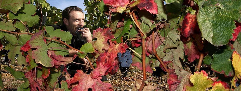 Christian Chabirand, le vigneron du jour d'après